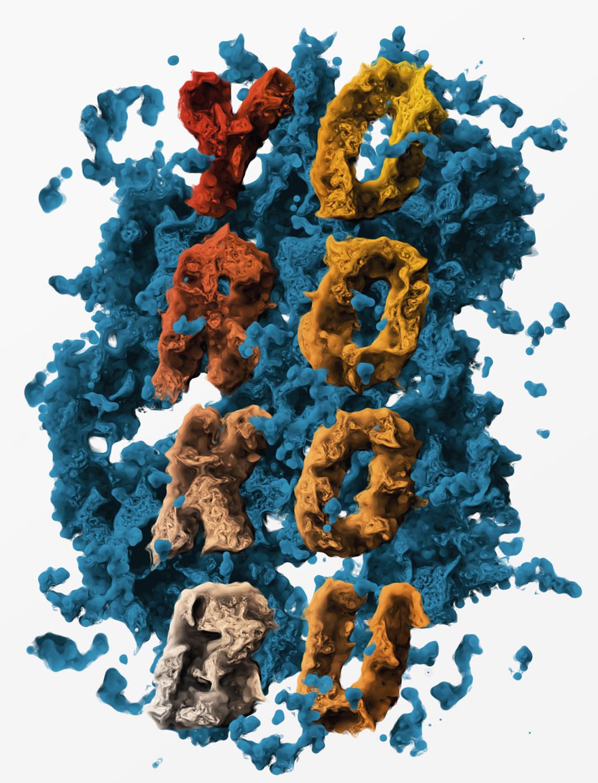 yorokobu startmoving portada cover